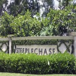 Steeplechase | Premiere Estate Home Community | Discover Spacious Living