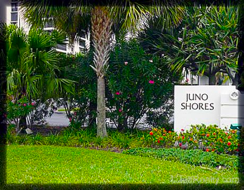 Juno Shores Resort Real Estate & Homes for Sale Juno Beach FL real estate