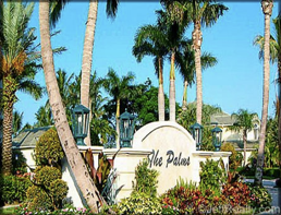 The Palms homes for sale.png