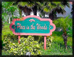Place in the woods Palm Beach Gardens