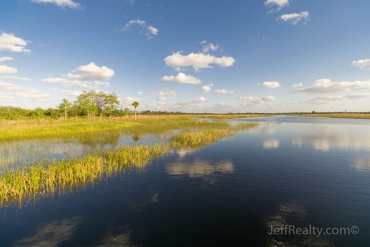 Palm Beach Places Unknown | Pine Glades Natural Area