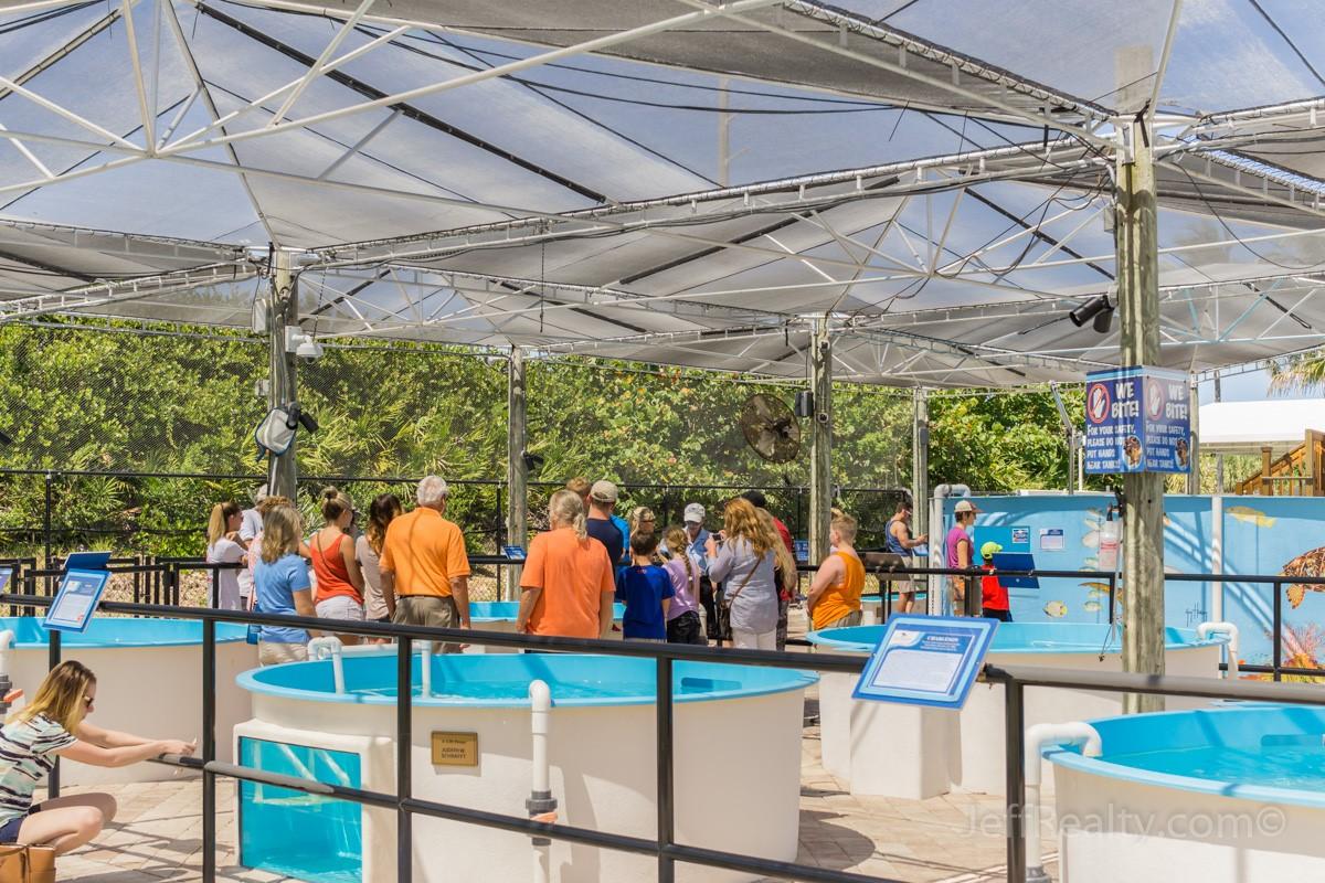 Palm Beach Places Unknown | Loggerhead Marinelife Center