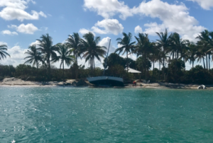 Lanae's Singer Island Spotlight: Derelict Boats after Irma