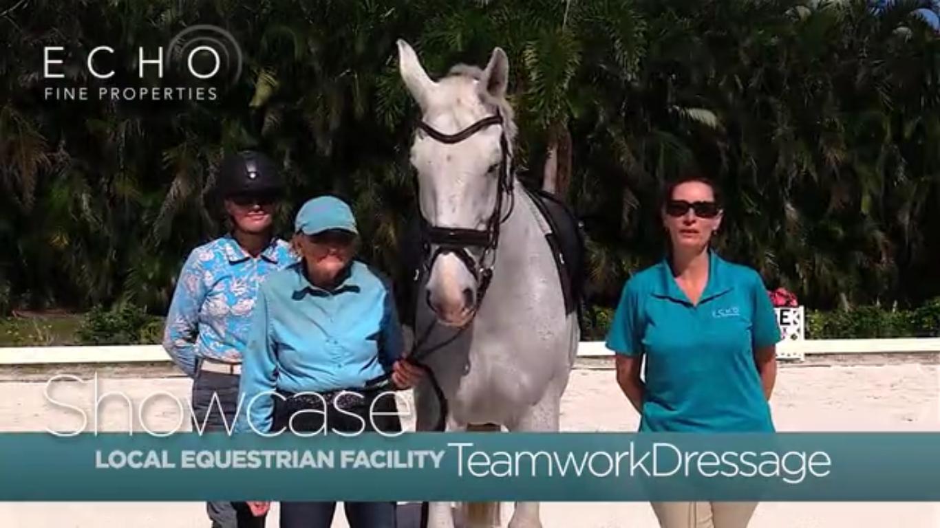 Teamwork Dressage