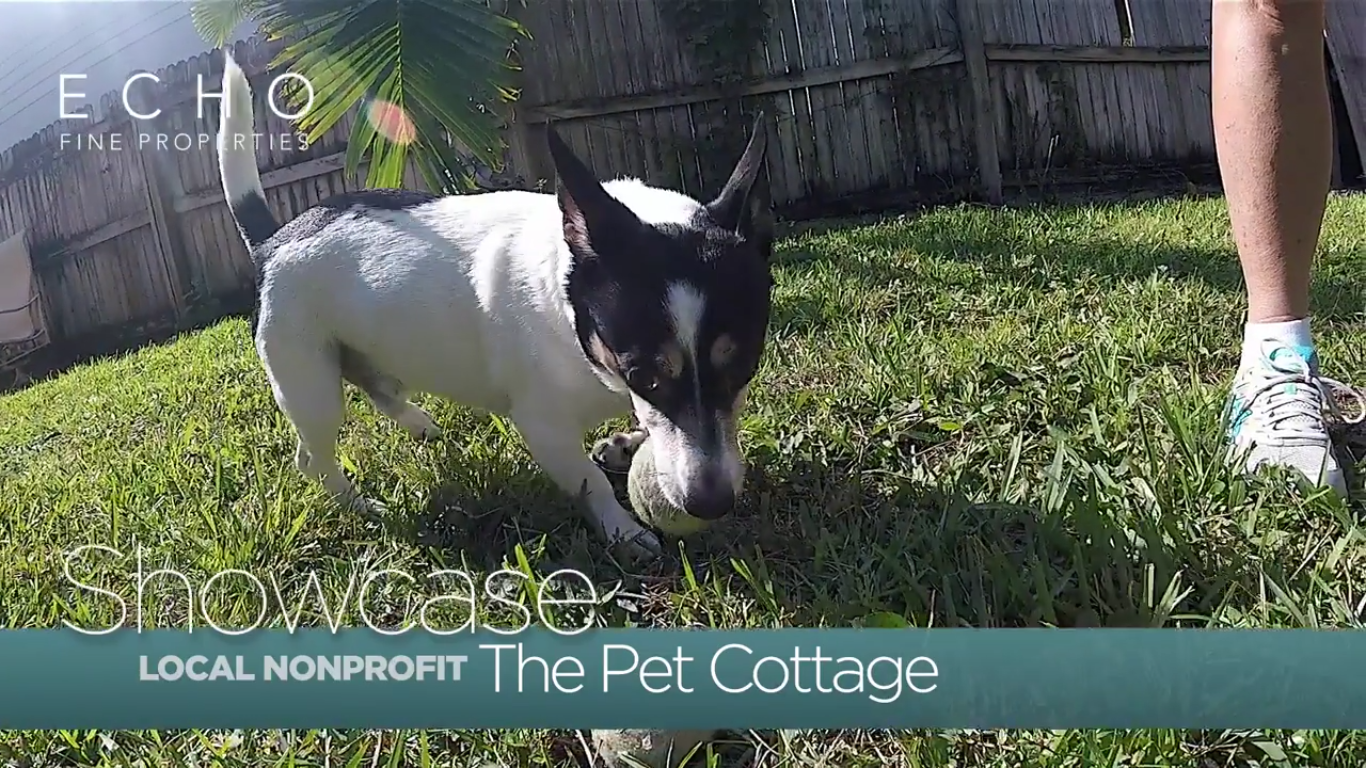 Pet Cottage